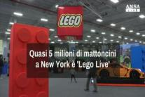 A New York e' 'Lego Live'