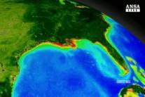 California lancera' satellite per trovare emissioni gas serra
