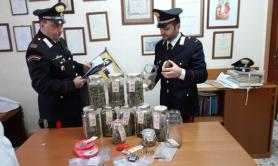 Pisticci, sorpresi in garage con 800 grammi di marijuana: in cella due 21enni