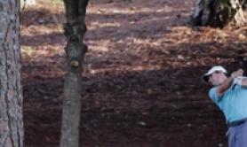 FedEx Cup: fulmine su albero, 6 feriti