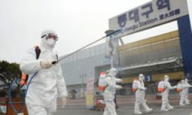 Coronavirus: altri 594 nuovi contagiati