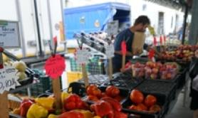 Month-on-month retail sales down in Oct - ISTAT