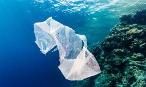 Brindisi, Sì alle spiagge «plastic-free» ma materiale sostitutivo è carente