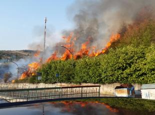 incendi in basilicata