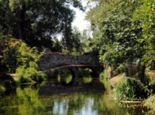 Ninfa gardens hit by drought
