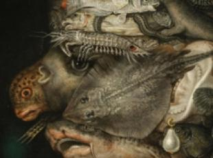 Arcimboldo exhibition in Rome between science and play