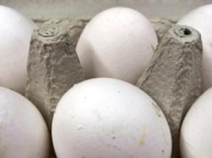 Police seize over 92,000 tainted eggs (3)